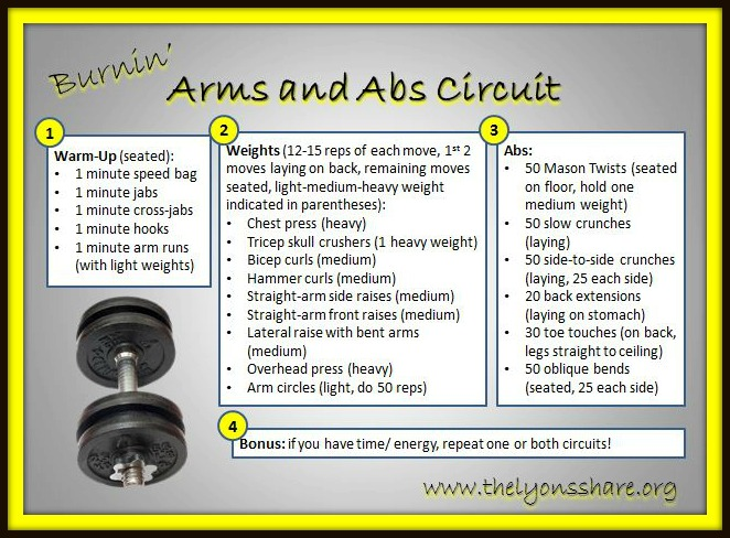 Burnin Arms and Abs Circuit The Lyons Share