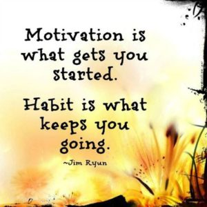 motivation is what gets you started habit is what keeps you going - blog 1.22.14